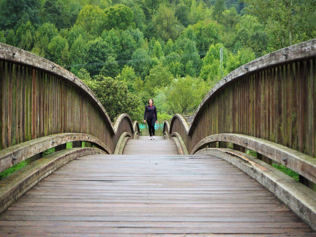 Bridge to Castellfollit de la Roca