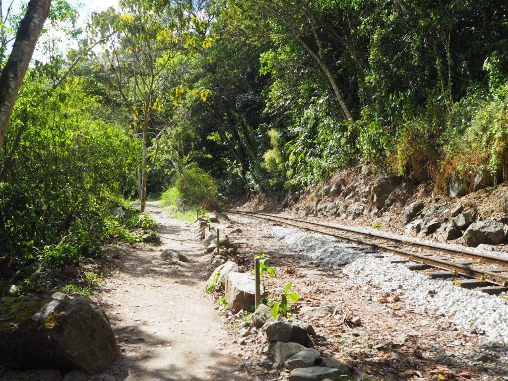 Tran rails