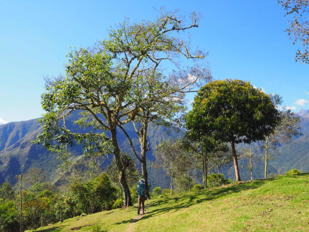 At Llaqtapata